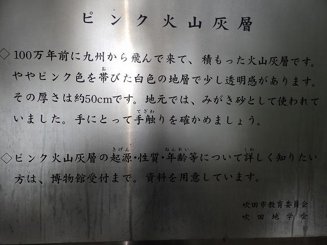 Pb016221